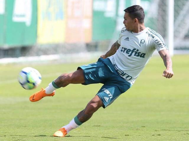 Dudu é uma das armas do Palmeiras contra o Alianza Lima hoje (Foto: Cesar Greco/Ag Palmeiras/Divulgação)
