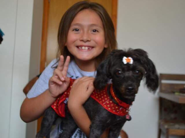 Em casa, até a cadelinha Lulu entende os sinais dos donos.