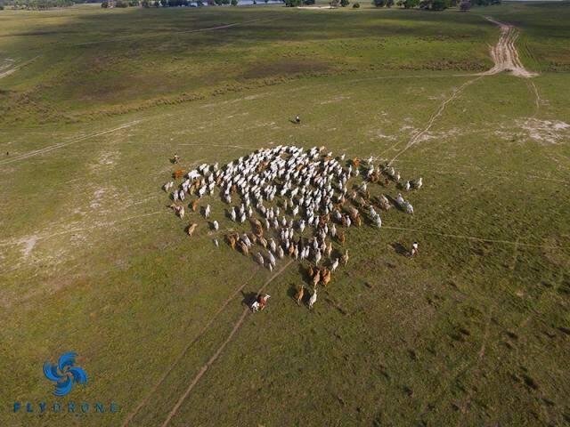 Imagens de drones também servem para apresentar fazendas.