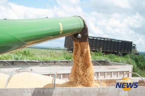 """Ano em que a """"safrinha"""" produziu a maior safra de milho da história de MS"""