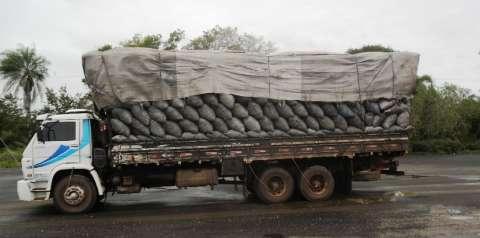 PMA apreende caminhão lotado de carvão ilegal e aplica multa de R$ 24 mil