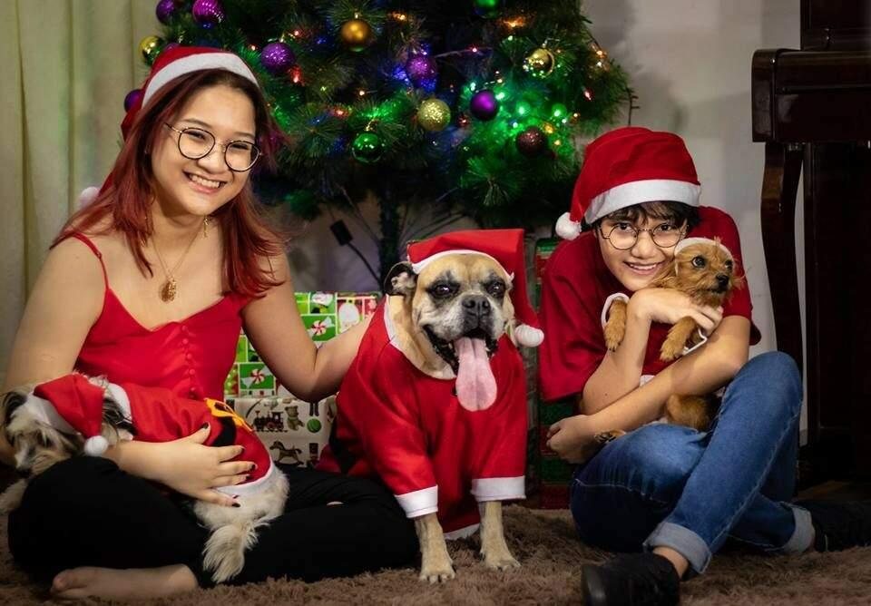 Irmãs posam com Lola, Pepita e Nigning para o retrato de Natal 2018. (Foto: Oscar Franco)