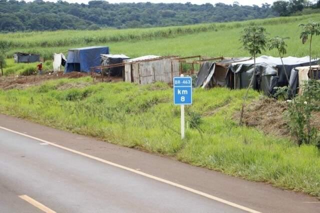 Grupo que estava acampado há 90 dias às margens da BR-463, invadiu a fazenda São Marcos nesta manhã. (Foto: Eliel Oliveira)