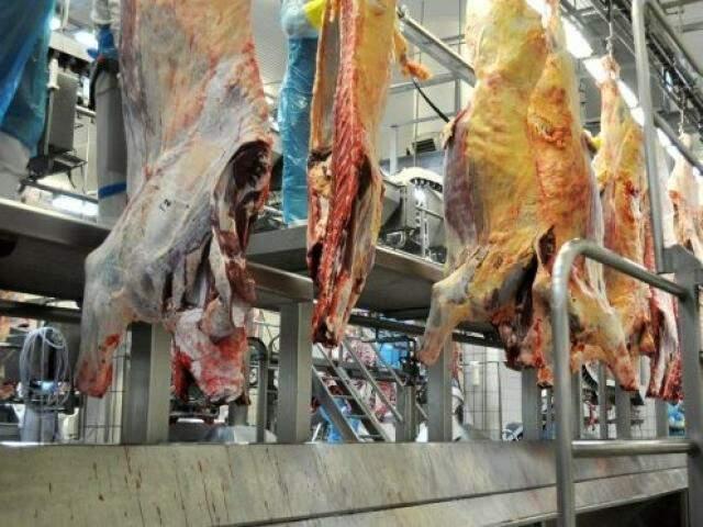 Carne bovina ajudou a impulsionar números positivos de exportação em MS (Foto: Divulgação)
