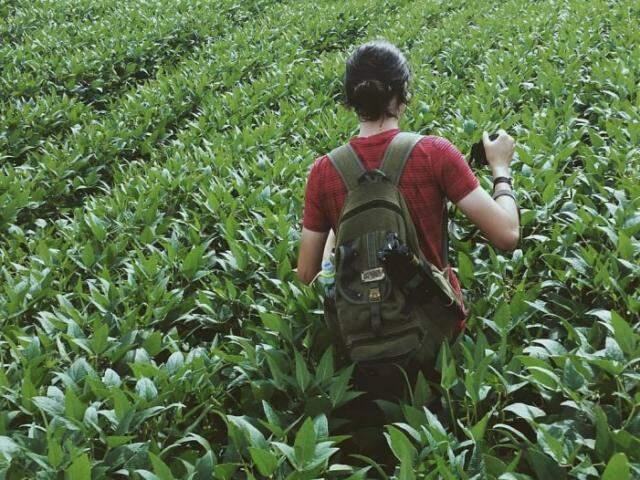 Henrique andando na plantação em busca da foto perfeita (Foto: Arquivo pessoal)