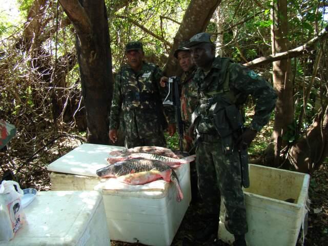 Exército e PMA apreenderam peixes pescados ilegalmente, durante a Piracema, no rio Paraguai (Foto: divulgação)