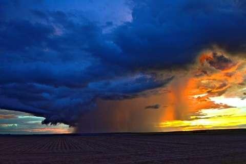 El Niño traz chuva na medida certa e plantio de soja passa de 60% em municípios