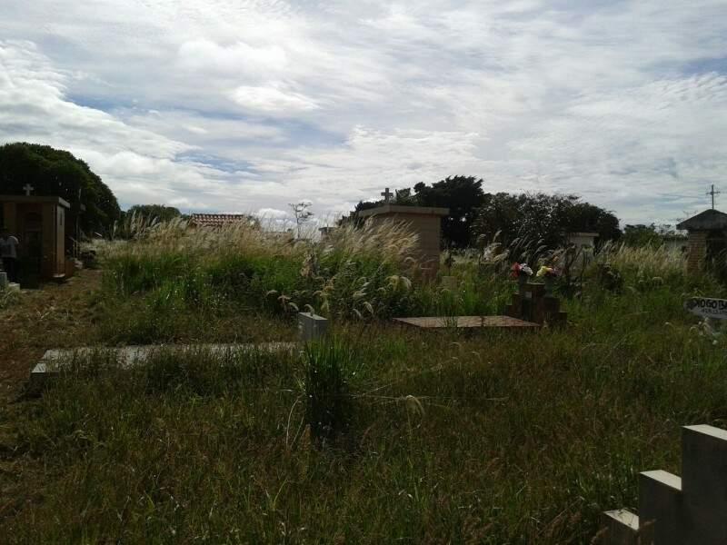 O mato alto praticamente recobre os túmulos do cemitério.