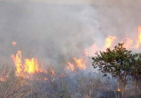 Agosto mal começou e Corumbá já registra 500 focos de incêndio