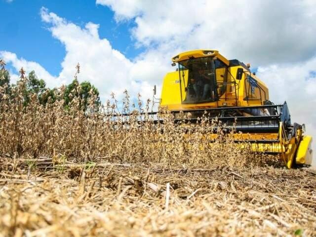 Colheita de soja em Mato Grosso do Sul (Foto: Marcos Ermínio)