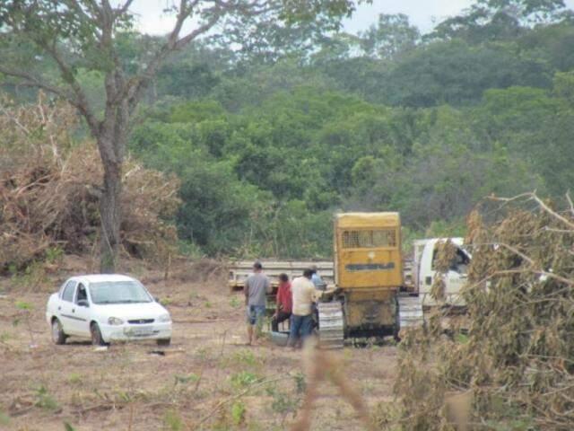 Desmatamento perto de rio teve suspensão temporária publicada nesta quarta-feira. (Foto: Direto das Ruas)