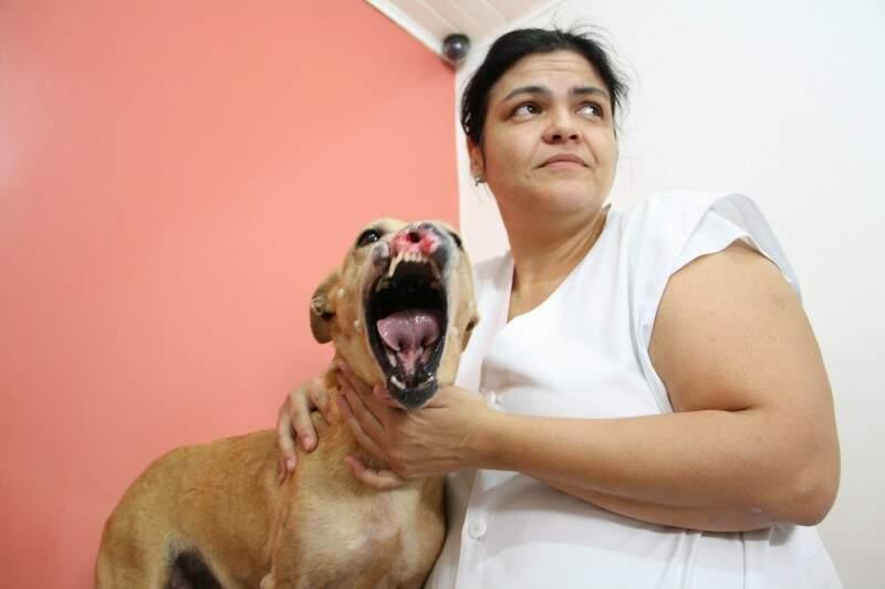 Narizinha está passando por tratamento na clínica de Ana Lúcia. (Fotos: Marcos Ermínio)