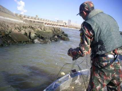 Pré-Piracema começa amanhã e fiscalização nos rios de MS será intensificada