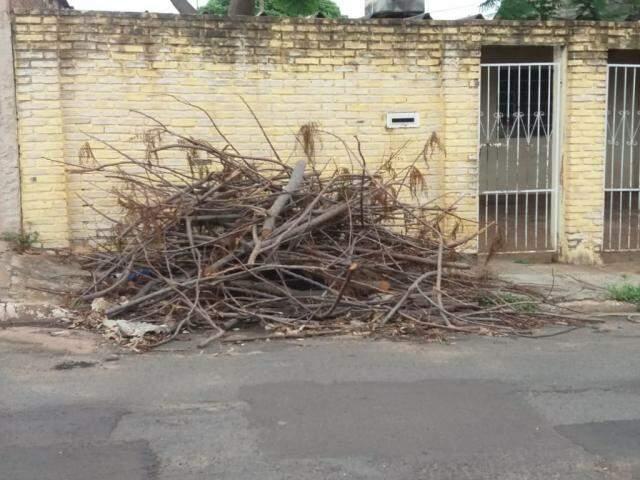 Pedaços de árvore foram deixados em calçada após corte. (Foto: Direto das Ruas)