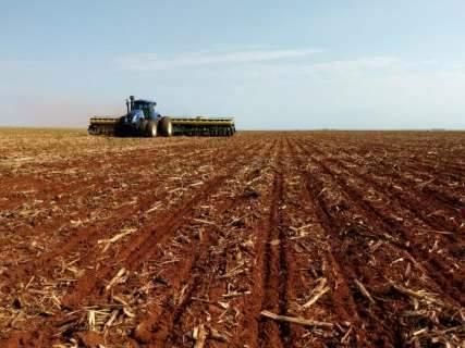Plantio de soja avança em 28 mil hectares por dia em MS, mostra levantamento