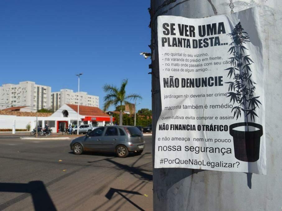 Folha sulfite ainda que resiste na avenida Fernando Corrêa da Costa. (Foto: Thailla Torres)