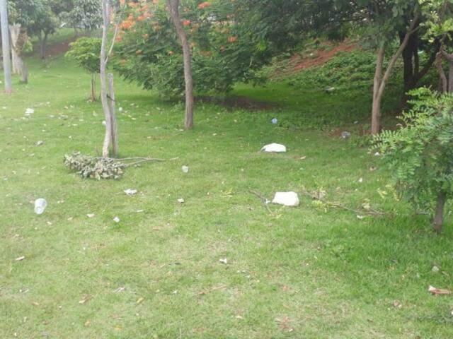 Prefeitura informou que lugar está no cronograma de limpeza para amanhã (7) (Foto: Direto das Ruas)