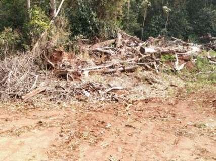 Três pessoas são autuadas em R$ 104 mil por desmatamento ilegal