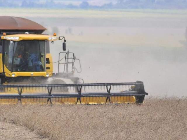 Valor da produção de soja é estimado em R$ 8,7 bilhões. (Foto: Eliel de Oliveira)