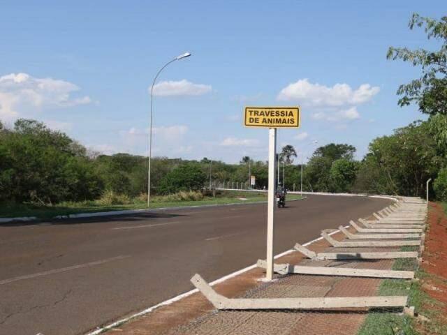Grade também caiu em ponto sinalizado para travessia de animais (Foto: Marcos Maluf)