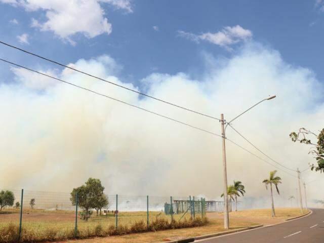 Parque Mata do Segredo foi tomado pelo fogo neste sábado (Foto: Henrique Kawaminami)