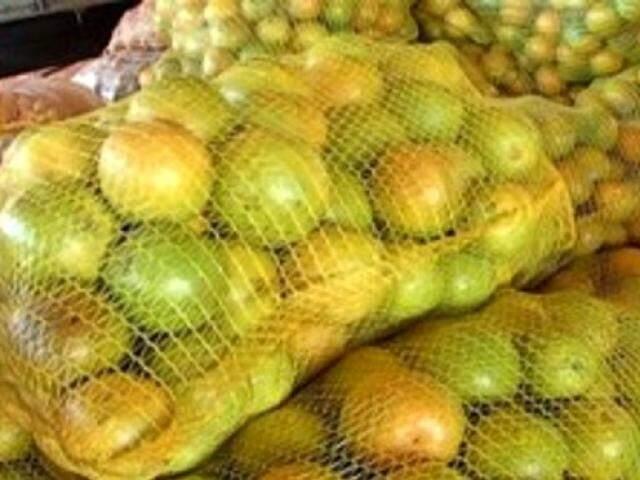 Hoje a região Sudeste concentra praticamente toda a produção nacional de suco de laranja (Foto: divulgação)