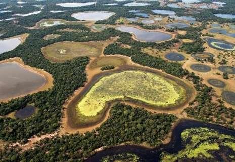 Devastação do Pantanal representa custo de R$ 19 milhões por ano