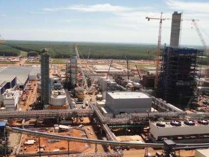 Fábrica de celulose antecipa início das operações em Três Lagoas