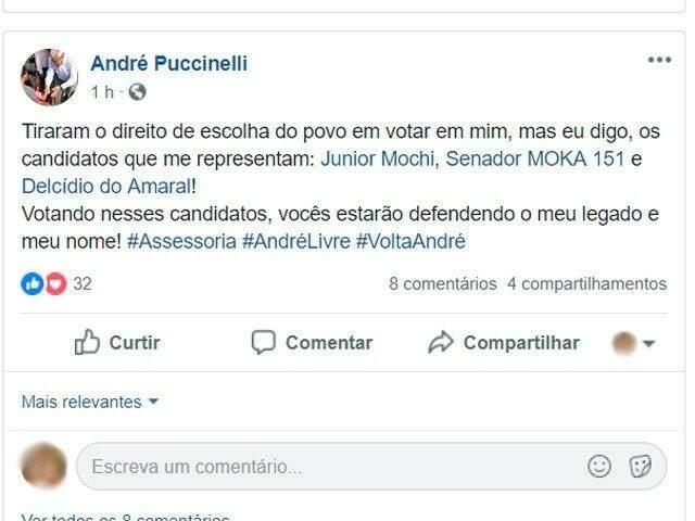 Manifestação via rede social, pedindo voto para Delcídio do Amaral (Foto: Reprodução)