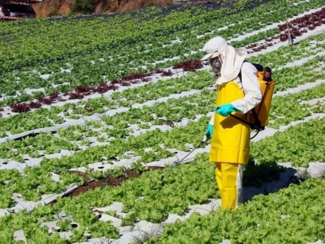 Uso de agrotóxico no campo (Foto: (Foto: Hypescience - Divulgação)