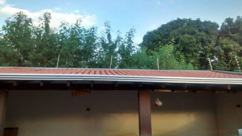 Cerca elétrica vive quebrada por causa do matagal. (Foto: WhatsApp)