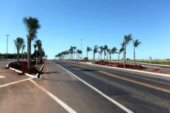 Serão plantadas 200 árvores de espécies arbóreas apropriadas para passeios públicos. (Foto: divulgação)