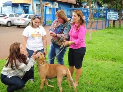 Pivô de polêmica, cão Scooby é devolvido a ONG