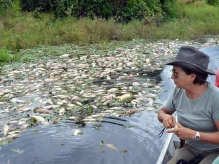 Relatório preliminar do Imasul aponta falta de oxigênio no Rio Negro