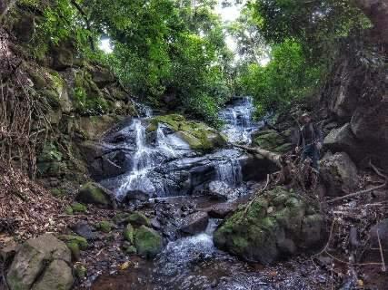 Oito dicas de trilhas para fazer turismo de natureza em Mato Grosso do Sul