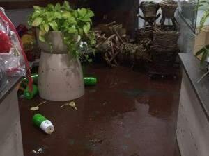 Água invadiu uma floricultura na Rua Francisco Bento. (Foto: Direto das Ruas)