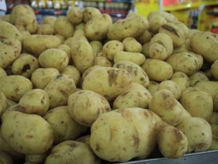 Preço da batata e do tomate sobem e cesta básica vai a R$ 402 na Capital