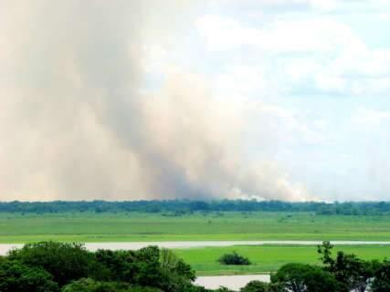 Ibama quer reforço de helicópteros para combater queimadas no Pantanal
