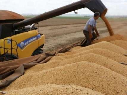 Preço da saca de milho cai 56% e comercialização estagna em MS