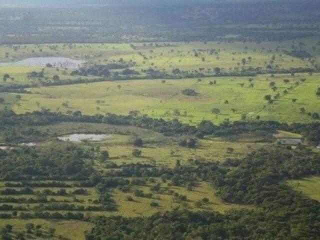 Propriedade rural em Mato Grosso do Sul. (Foto: Marcos Ermínio/Arquivo)
