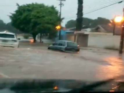 Com 5h de duração, chuva derruba árvores e alaga ruas em Ponta Porã