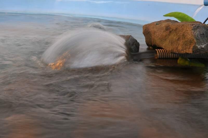 Sistema de filtragem dos tanques onde peixes estão armazenados (Foto: Alcides Neto/Arquivo)