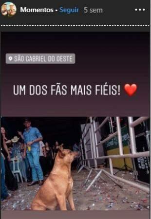 Galera no show sertanejo. (Foto: Reprodução/Instagram)