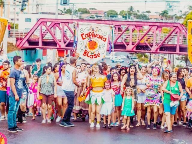 Carnaval do ano passado do Capivara Blasé. (Foto: Arquivo/Vaca Azul)