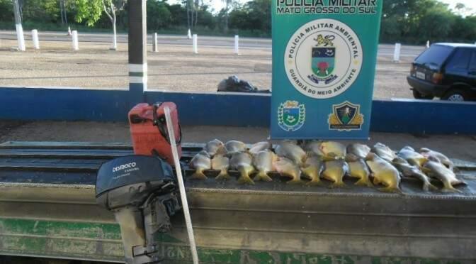 Fiscalizações continuarão intensas para reduzir volume de pescados. (Foto:Divulgação)