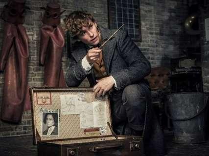 """Maratona Harry Potter antecede """"Animais Fantásticos: Os Crimes de Grindelwald"""""""