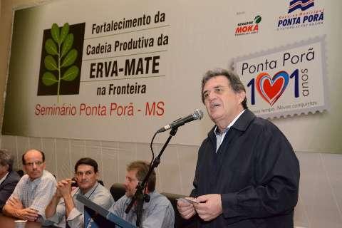 Licitação para compra de mudas de erva mate beneficiará mais de 200 produtores