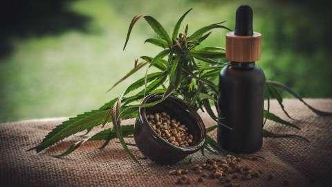 Depois de passar meses na cama, Dani supera dores com cannabis medicinal