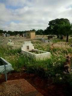 Assustado com mato alto, leitor limpa túmulos em visita ao cemitério Santo Amaro