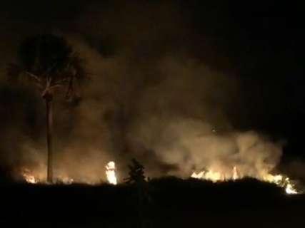 Bombeiros socorrem araras em incêndio em área perto da Nasri Siufi